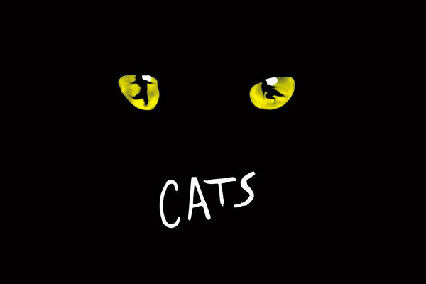 Cats the musical